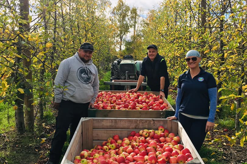 Members of Hansen Orchards apple picking team 2020