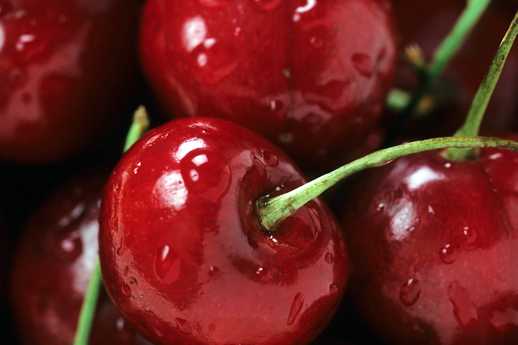 Cherry closeup
